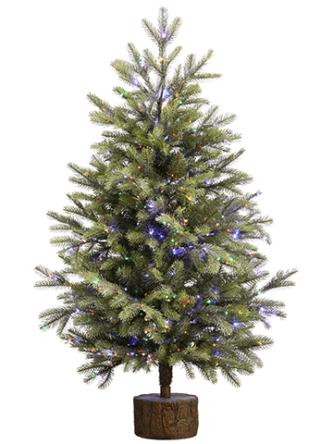 pine christmas tree with rice lights