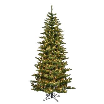 Medium Profile Fraser Fir Christmas Tree
