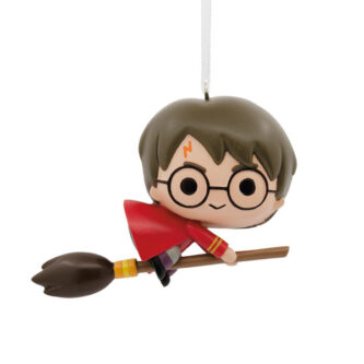 Harry Potter on his broomstick