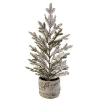 Potted Noble Fir Tree with snow