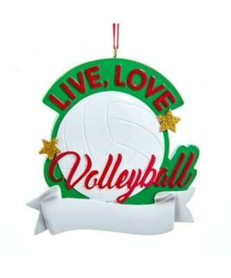 Live, Love Volleyball Personalized ornament