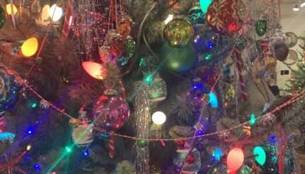St. Nick's Christmas & Collectibles showcating the best Christmas trees in Littleton, CO